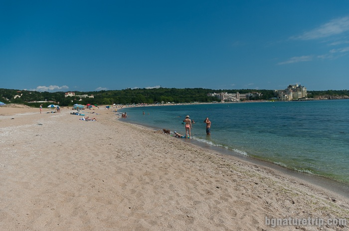 """Chauffeurs' Beach""  in the Alepu area between Sozopol and Primorsko."