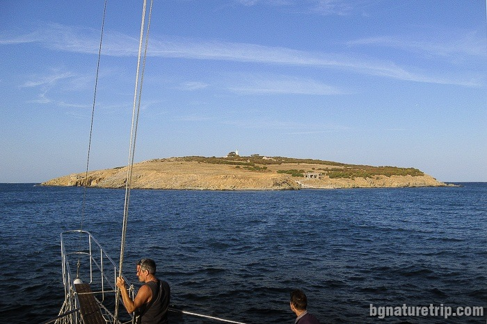 "A boat trip to ""St. Ivan"" island"