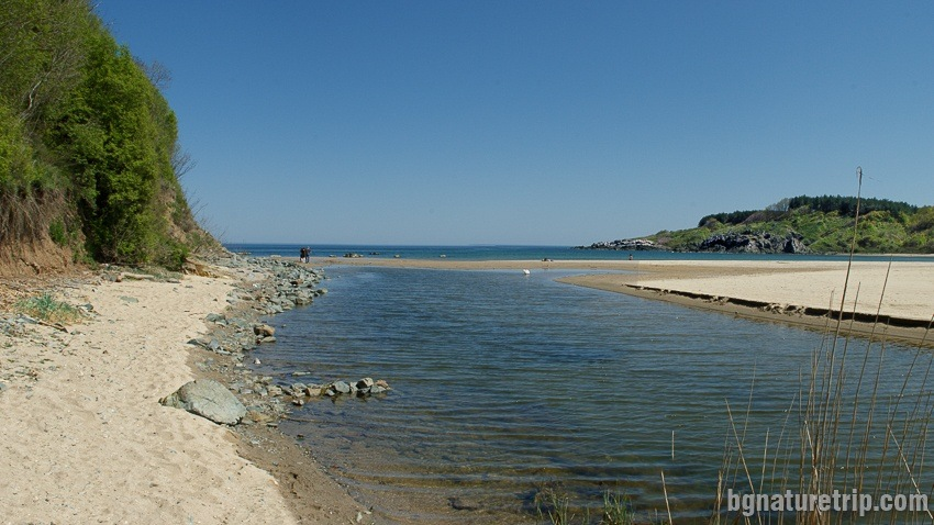 The Silistar River Mouth