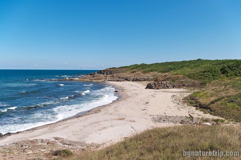 """The wild beach """"Listi"""""""