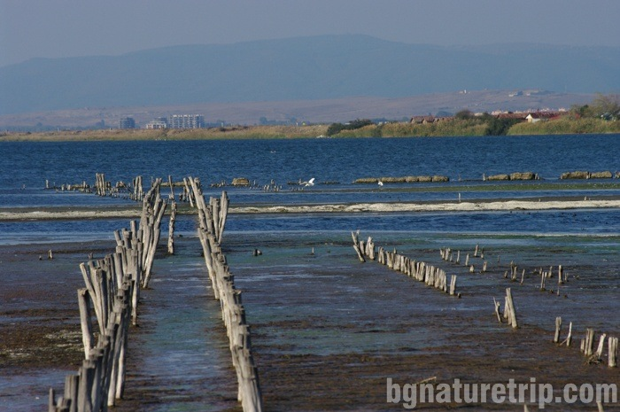 A look at the Pomorie Lake